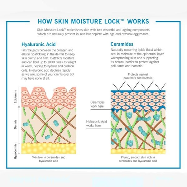 How Moisture Lock Works