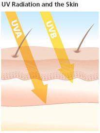Image showing UVA and UVB rays penetrating skin